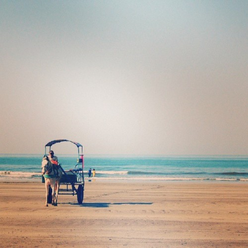 #horse #carriage #ride #beach #sky #dapoli #beautiful #day