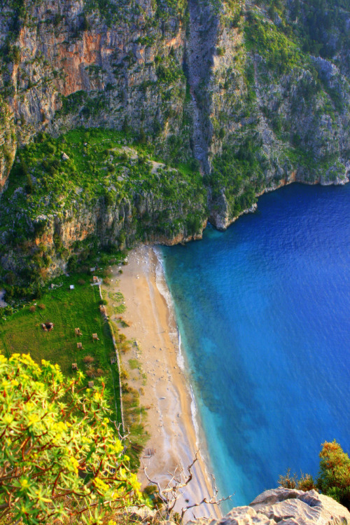 travelingcolors:  The Butterfly Valley | Turkey (by volkan.andac)
