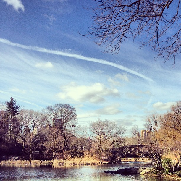 Sundays at the Park. #NYC  (at The Pond)