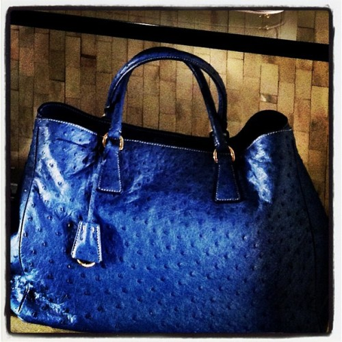 If You're Feeling Blue… Let it be blue ostrich from #Prada 💙💙 ~ #baglove #fashionoffice #fashion (at Bergdorf Goodman)