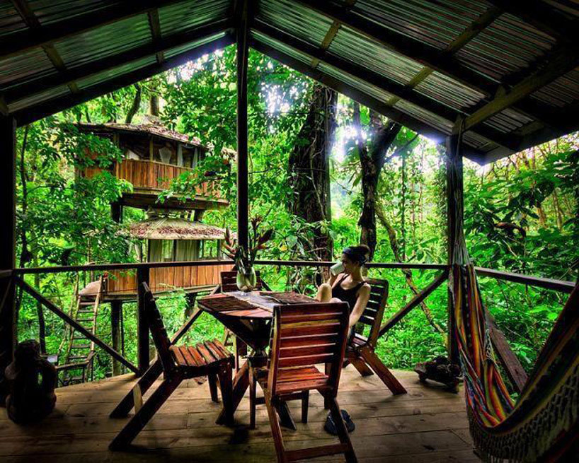 cjwho:  finca bellavista: a sustainable treehouse community, costa rica