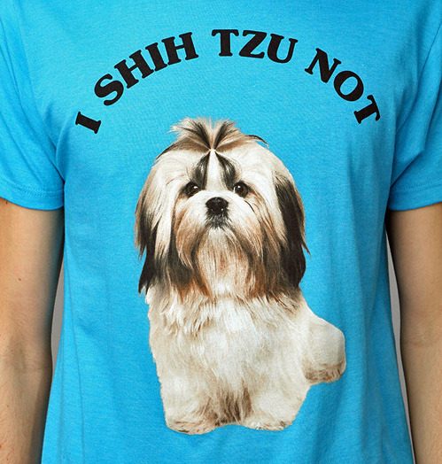 imnotreallyahipster:  FINALLY SOMETHING THAT INVOLVES SHIH TZU'S THAT HAS THE NAME SPELLED CORRECTLY.