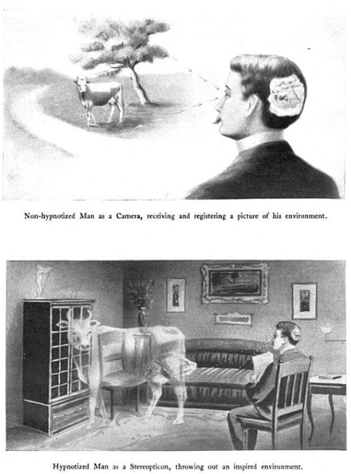 zoomar:  Hypnotized Man as a Stereopticon, throwing out an inspired environment.