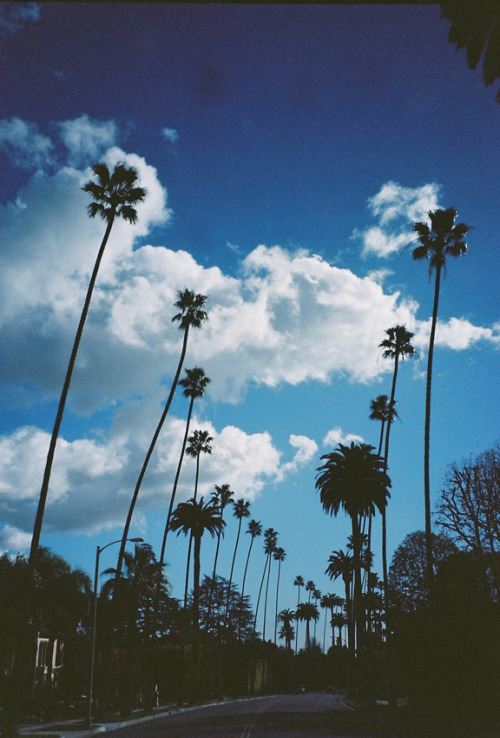 Blue Sky Blues, Beverly Hills.