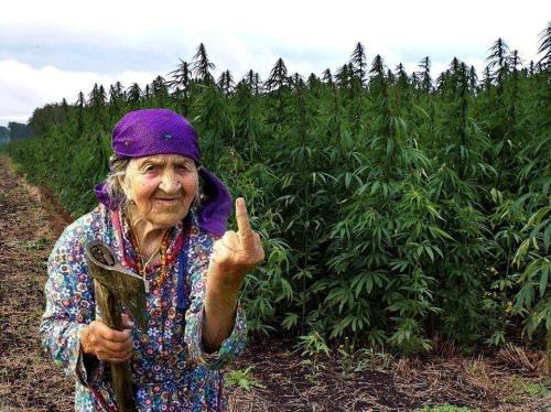 meadow-sage:  pranajuana:  Me in 40 years  This is going to be me too though