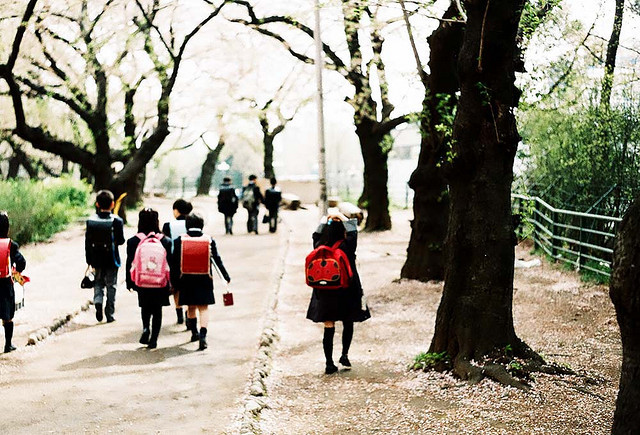 dreams-of-japan:  A new school term by Hs7th on Flickr.