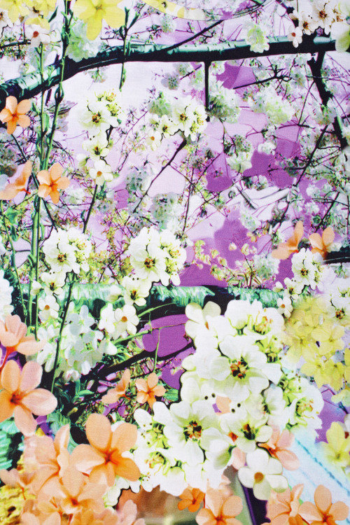 peachnaked:  youthlush:  colours omg   I love floral