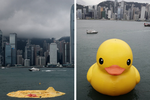 The world's saddest giant rubber duck…