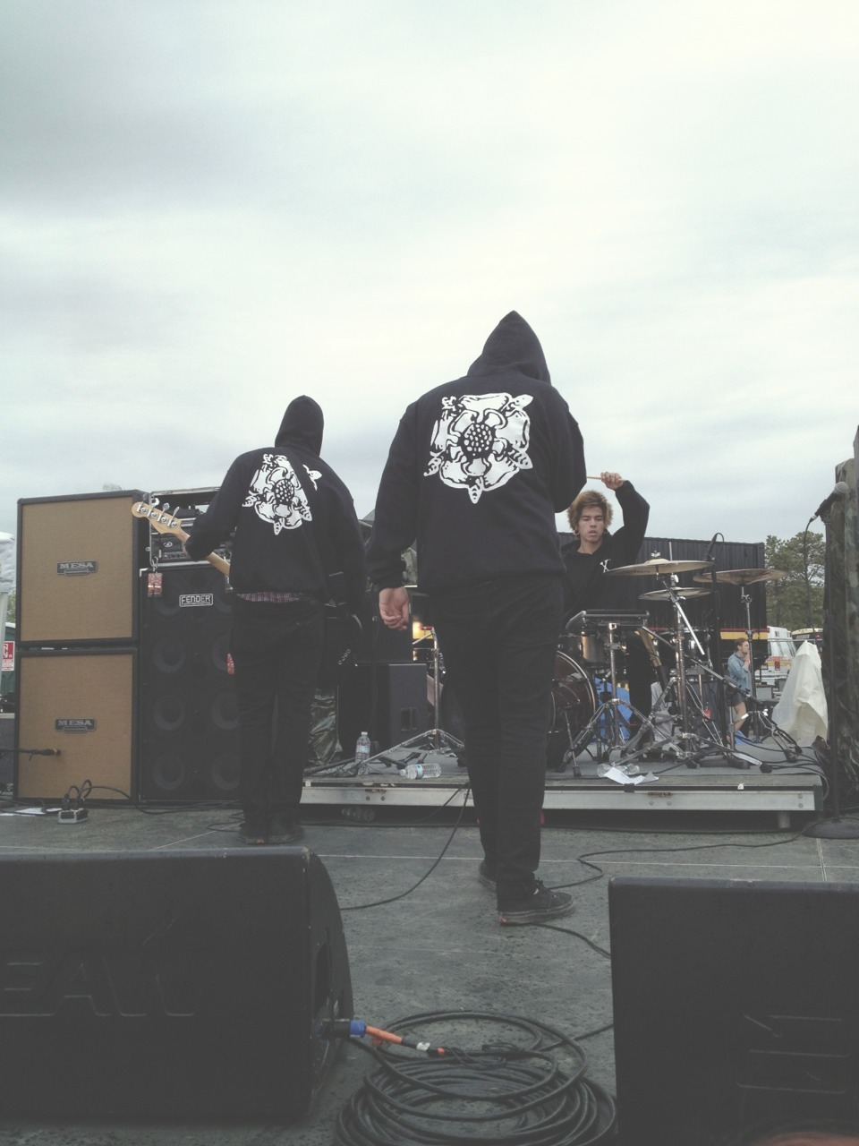 treevillage:  I really like this picture I got of Sworn In.