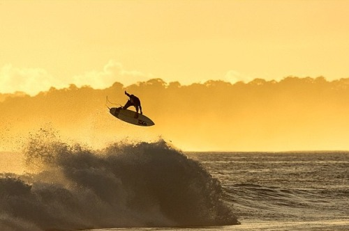 follow-the-alakai:  Dane Reynolds