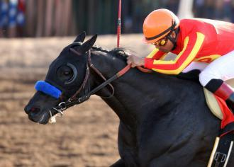 Preakness Thoughts #8: Govenor Charlie The royally bred Baffert colt is back after his foot bruise setback. He's run just 3 times – 2 wins and a second – and headed to the Derby off a 5 length, record-setting win in the Sunland Park Derby. A minor foot bruise and lost training time dropped him from Derby contention; Baffert must like what he sees to put him in here. He's improved steadily with each start, and looks the part of a classy colt. Photo by Coady Photography (via drf.com)