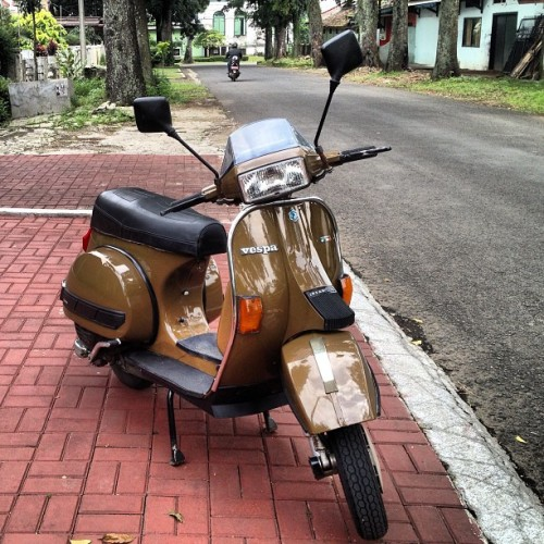 martfell:  Mr.Brown Sugar #vespa #scooter #excel #T5 #scooterboy #classic #vintage