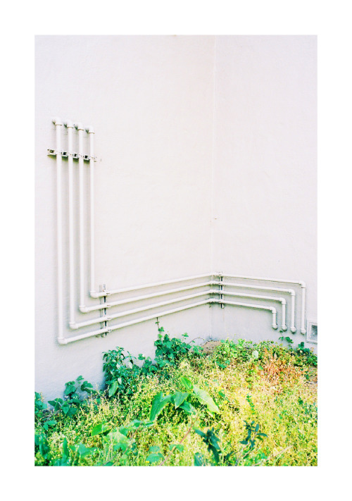 thejogging:  [LINEAR], 2013 35mm j
