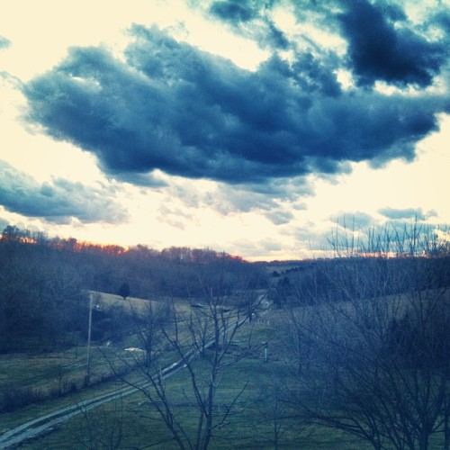 #BluegrassBeautiful (at Morning Glory Farm)