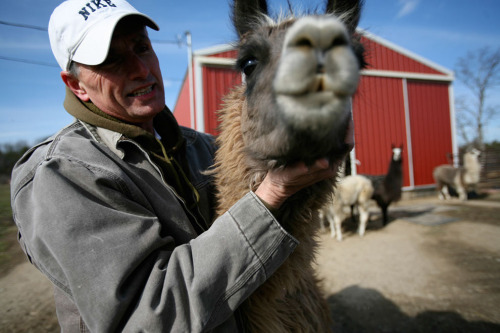 buzzfeedlgbt:  This animal sanctuary is in danger because its owner, Kevin, was fired from his job for being gay.
