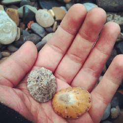 Treasure (at Whitley Bay Beach)