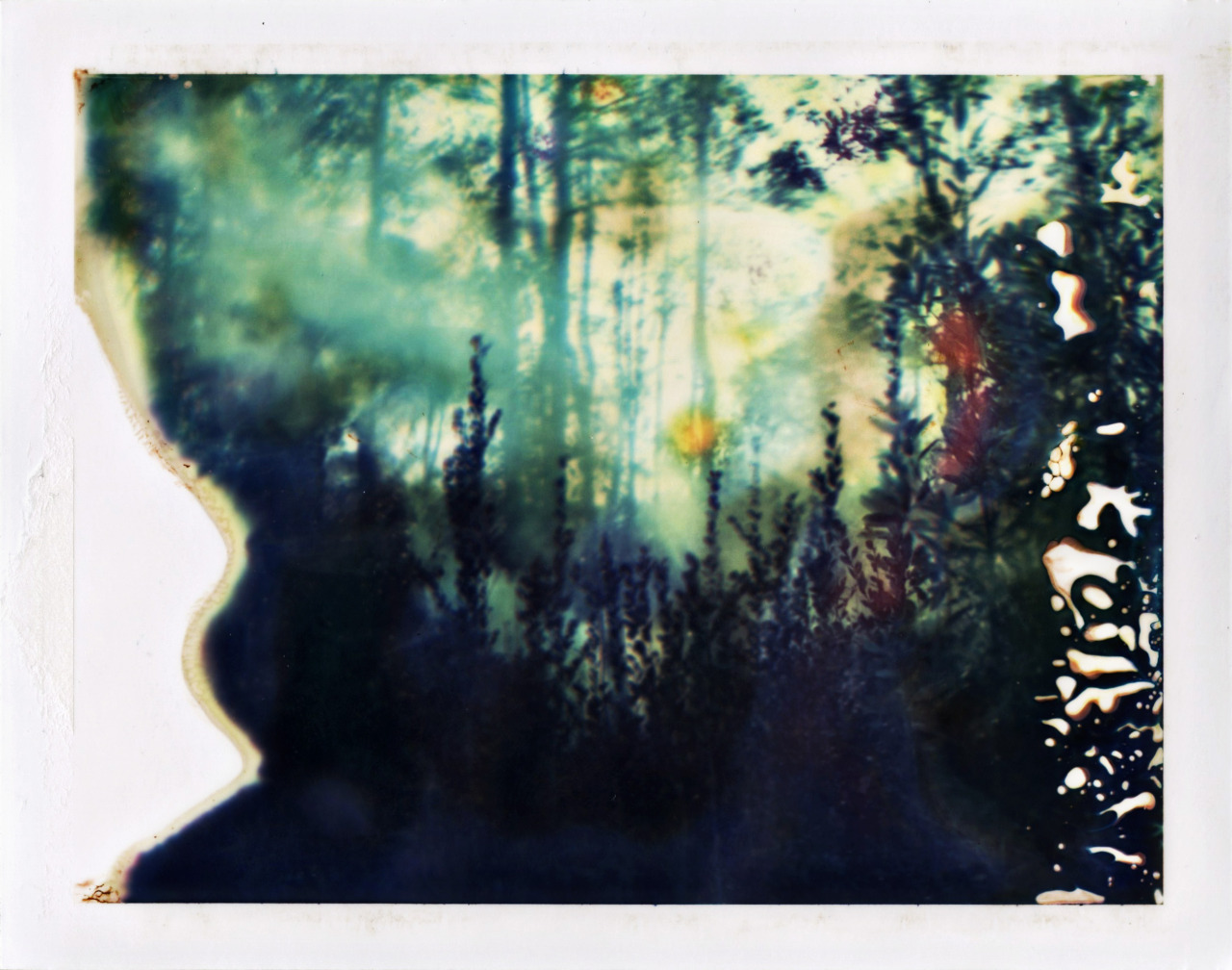 all over you (shot with 20 year old polaroid peel apart)