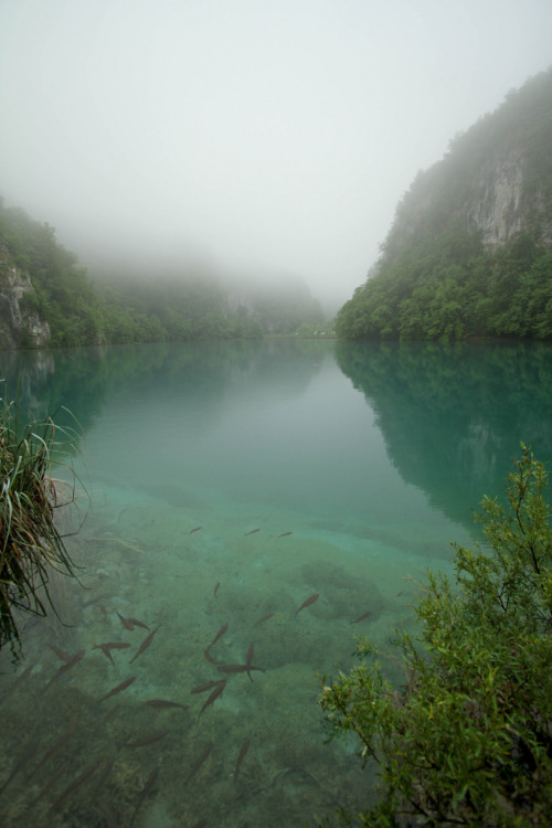 ethertune:  Foggy Lake (By Adam Raczynski)