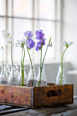 elorablue:  Spring Flower Arrangements-Image via Skonahem