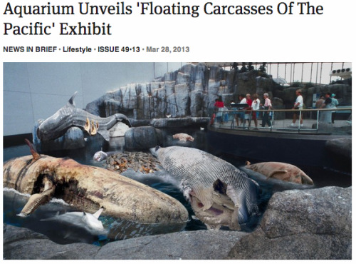 theonion:   Aquarium Unveils 'Floating Carcasses Of The Pacific' Exhibit: Full Report