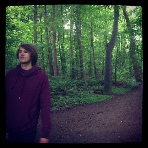 Taking a walk in the awesome green forest with my man #walk #forest