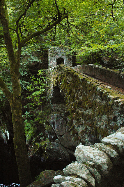 euphoricspirit:  Old stone bridge at The Hermitage in Dunkeld, Scotland (by Taurec).