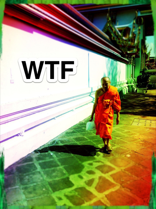 We're back - Our series WTF - What The Future is going back into production to continue the journey to understanding tomorrow WTF Website