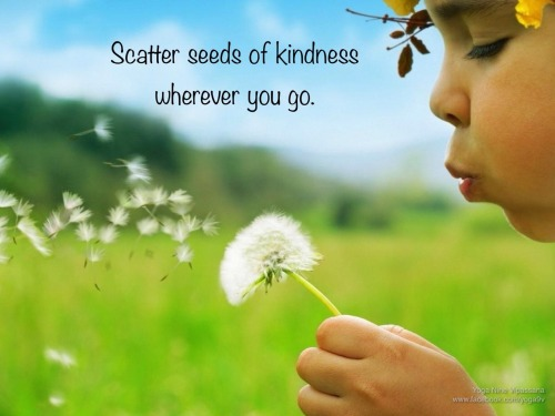 yoga9vipassana:  Scatter kindness