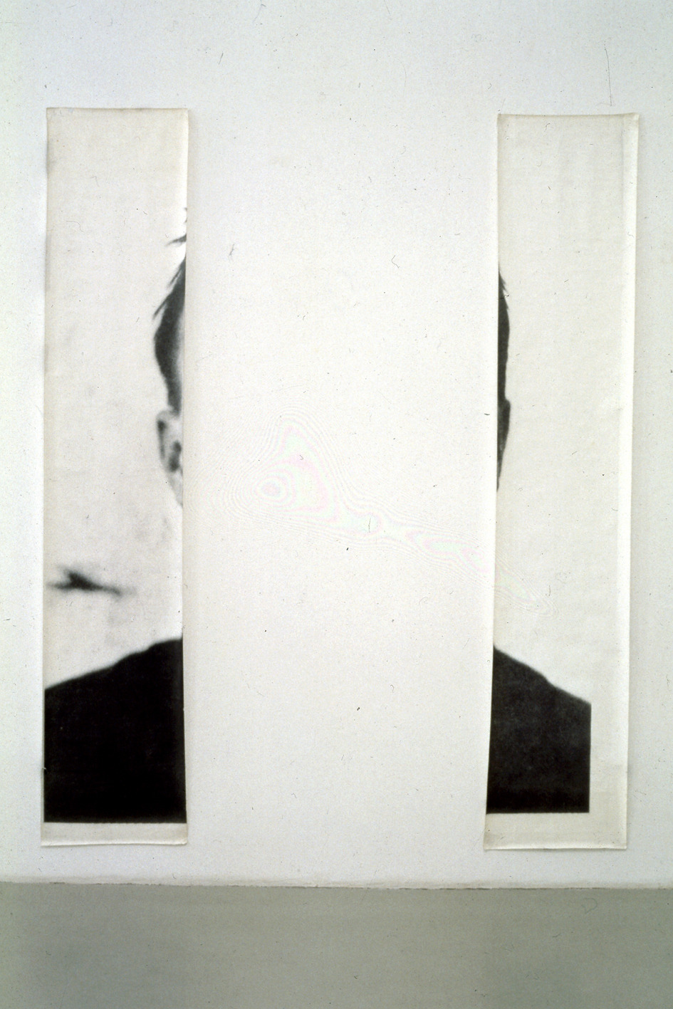 erasing:  The Ears of Jasper Johns | Michelangelo Pistoletto Photo by P. Pellion