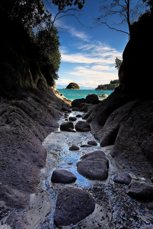 bluepueblo:  Ocean Canyon, New Zealand photo via cleo