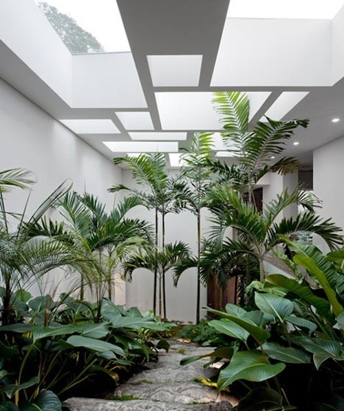 theaestate:  i want an atrium via