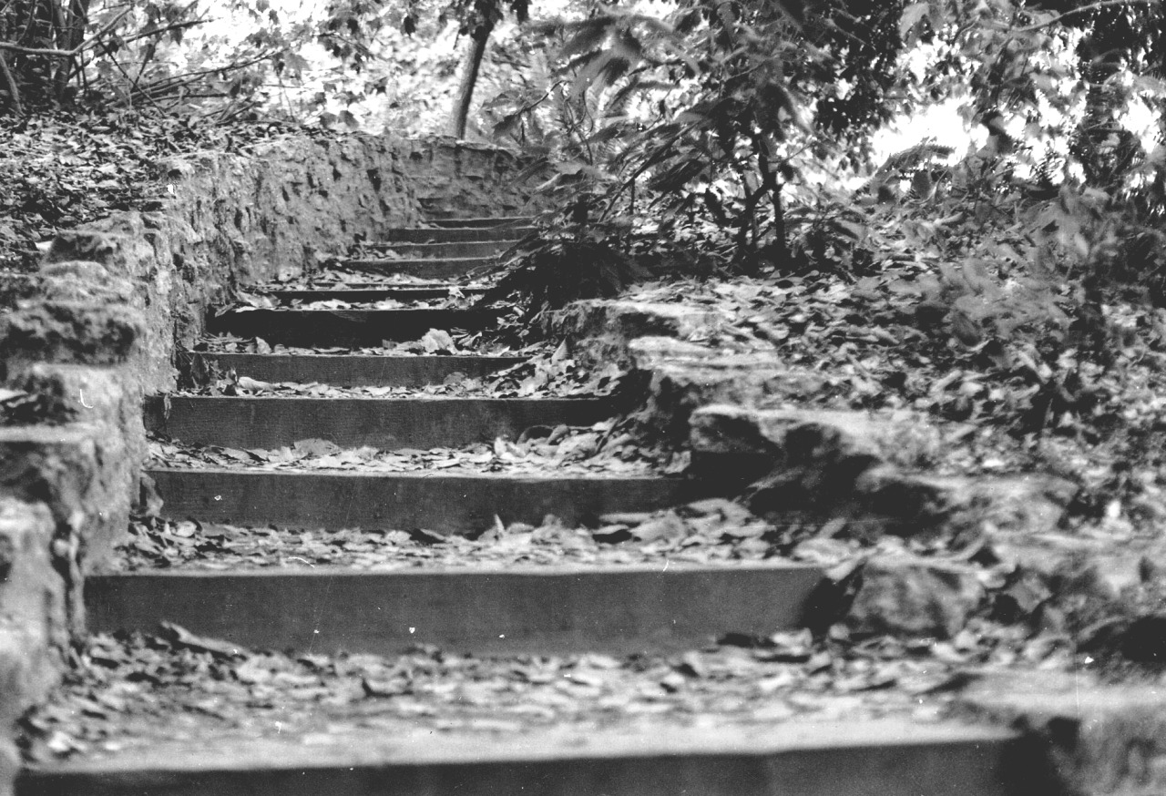 """Steps"" - 35mm film"