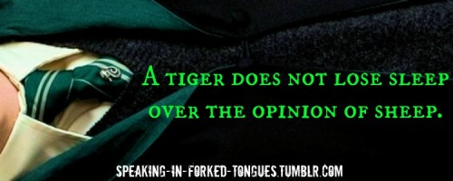 speaking-in-forked-tongues:  A tiger does not lose sleep over the opinion of sheep.