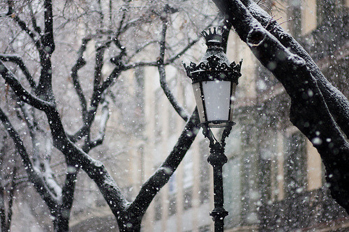 a-winter-fairytale:   winter | Tumblr on We Heart It - http://weheartit.com/entry/43393345/via/vintagediamond