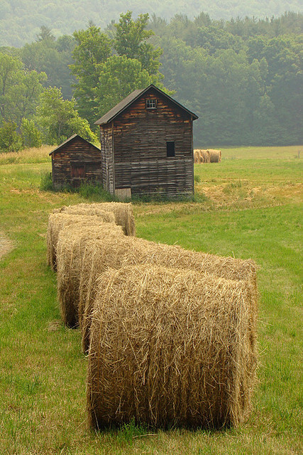 Hay bales in Massachusetts