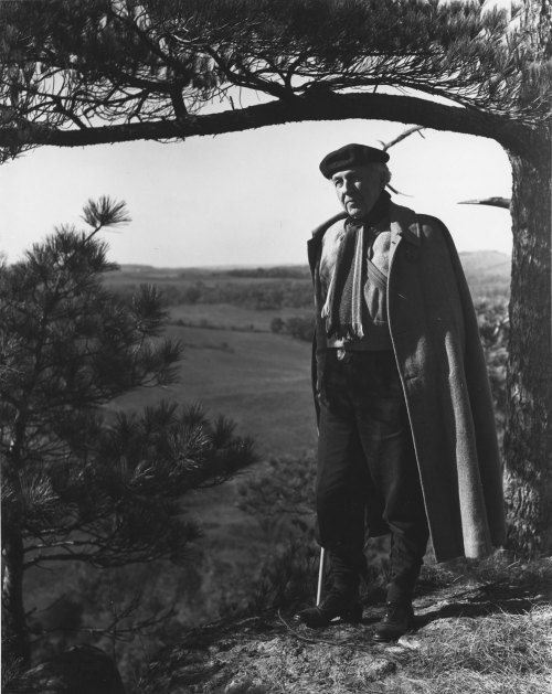 chicagohistorymuseum:  Frank Lloyd Wright standing under a tree at Taliesin in December 1937. Photograph by Hedrich-Blessing