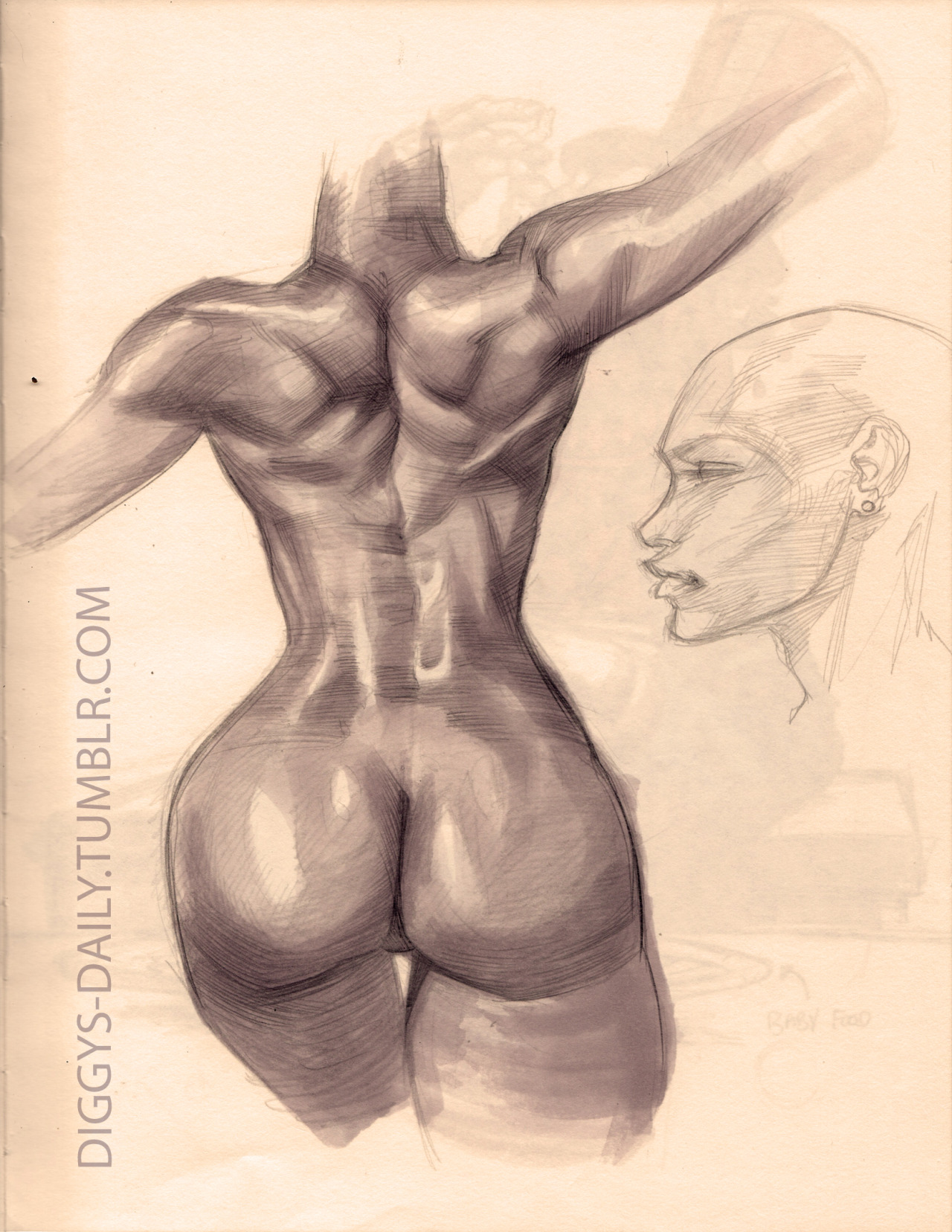 SKETCH  OF THE DAY: FEMALE ANATOMY STUDY 2011