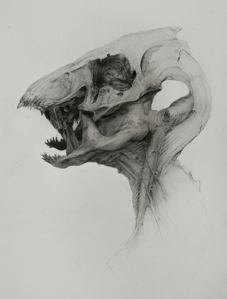 "rfmmsd:  Artist: Jelmer Boskma ""Sunday Monsterbeast""  Graphite & Ink"