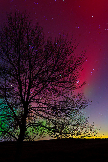 dranilj1:  #054: aurora by Isarl on Flickr.