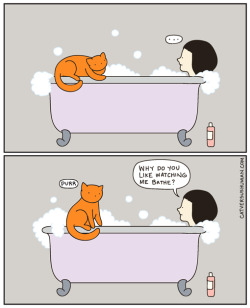 Exactly what I always ask my cat.   catversushuman:  I guess it's nice to have company.