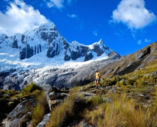 A runner descends from Peru's Punta Union Pass while 19,000′ Taulliraju stands watch along the Sierra Andina Marathon course.Photo: Highline Running Adventures