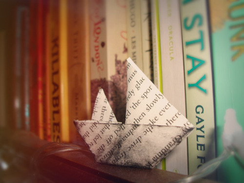 bloodybrilliantbooks:  One of my favourite book shelf decorations.