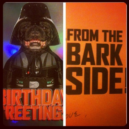 Sweet card from the parentals #picstitch