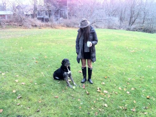 #Wellies #Rex, the dog #Morning walk captured