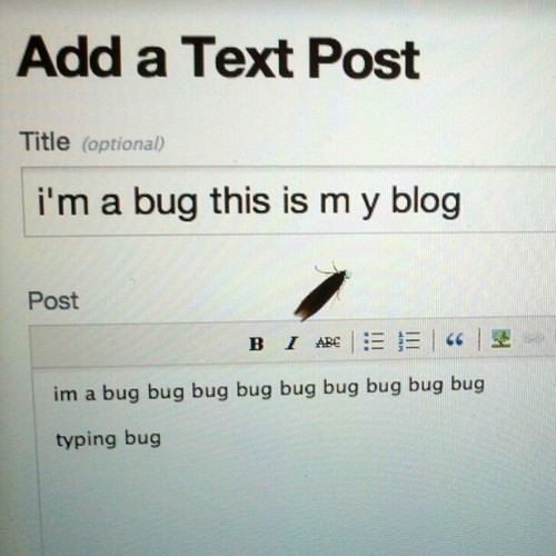 Bug with a blog. [Via Mlkshk]