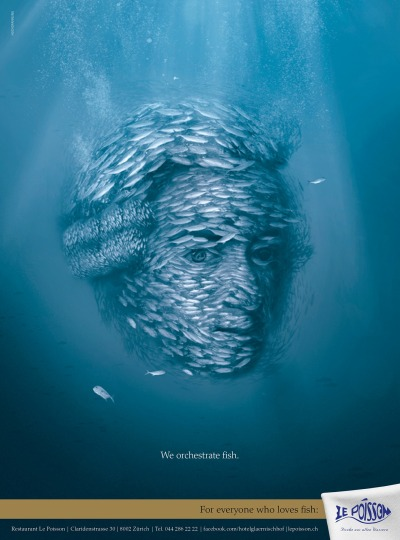 We orchestrate fish. Le Poisson Restaurant Ad by Hochspannung Kommunikation