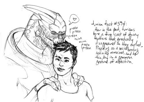 queensimia:  Turian fact #574: Far in the past, turians bore a fine coat of downy feathers that gradually disappeared as they evolved. Preening as a social bonding activity remained, and to this day is a common gesture of affection.