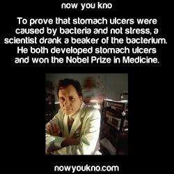 medicine nobel prize nowyoukno nobel prize in medicine barry marshall
