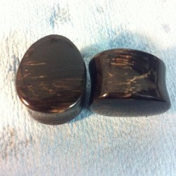 "evolvejewelry:  3/4"" black petrified wood"
