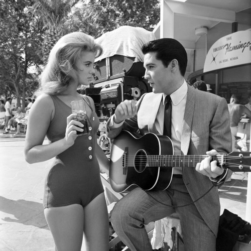 voxsart:  The Roll Lapel Suit. Elvis, with Ann-Margret.